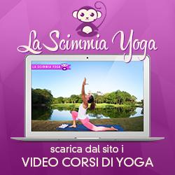 Scimmia Yoga